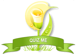 Quiz Me achievement earned on 10/19/2012 2:09:53 AM.