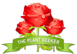 The Plant Seeker achievement earned on 5/17/2014 4:35:31 PM.